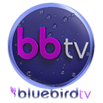 Bluebird TV Girls